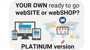 Website or Webshop – Ready to use including Hosting 12 months (Platinum)