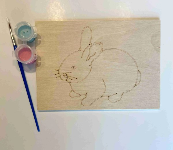 bunny rabbit paint kit laser traced outlines