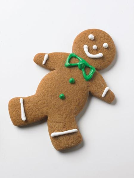 Wilton Gingerbread Man House Decorating Kit