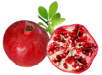 Pomegranate Health Benefits -image_UniScienceGroup
