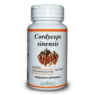 Cordyceps Sinensis energizzante Naturetica