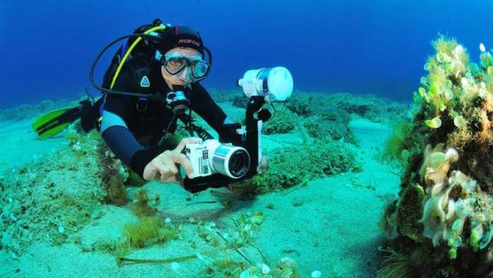 Best 5 Underwater Photography Camera