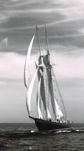Bluenose II under sail.