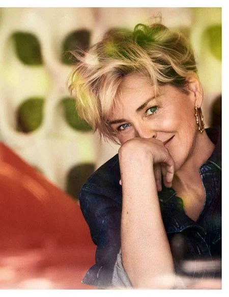 23 New Sharon Stone Short Hairstyles
