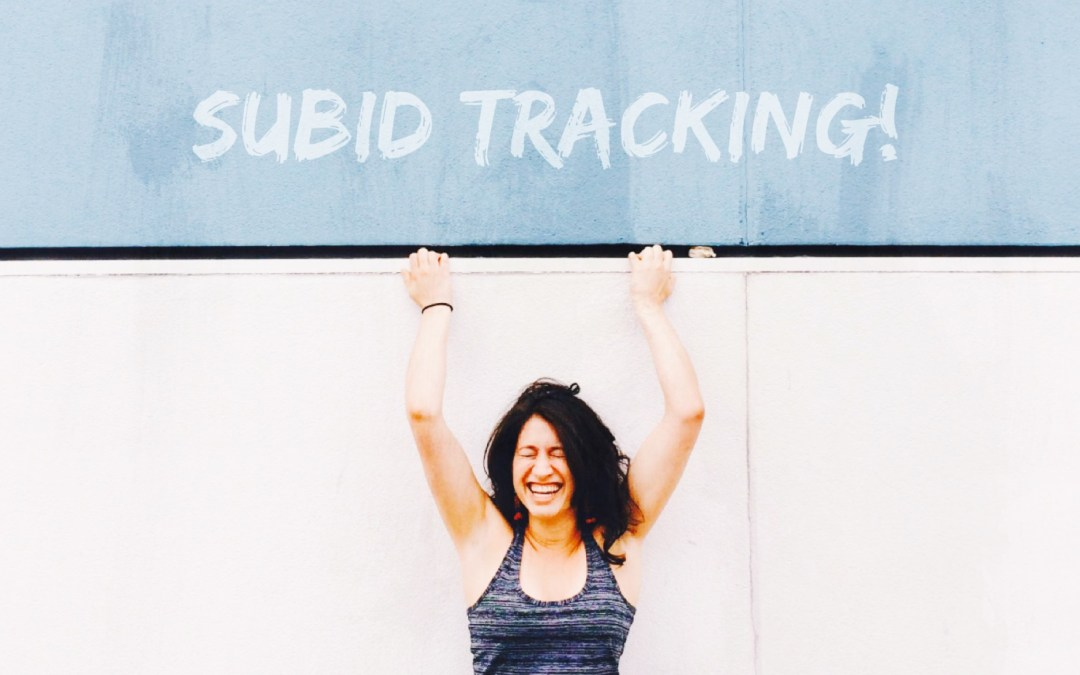SubID Tracking & How To Use It