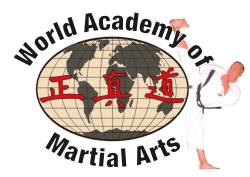 World Academy of Martial Arts