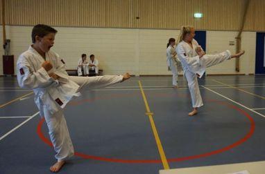 kyu test shotokan karate den haag