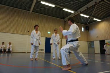 karate den haag ypenburg