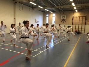 karate den haag