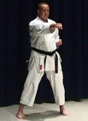 learn karate online