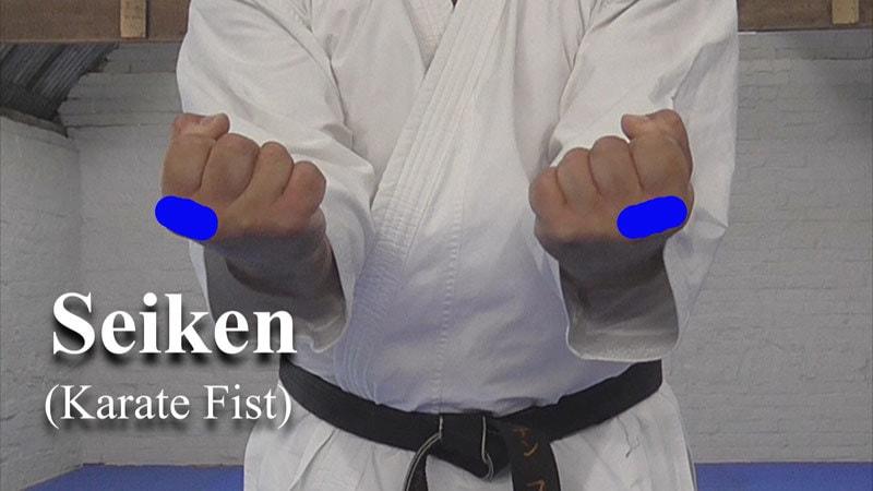 the karate fist