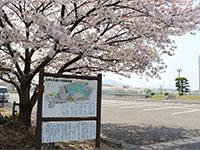 山本ふれあい公園