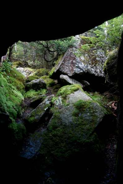Boulders and moss in the Ice Caves loop, King Ravine