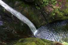 Kees Falls