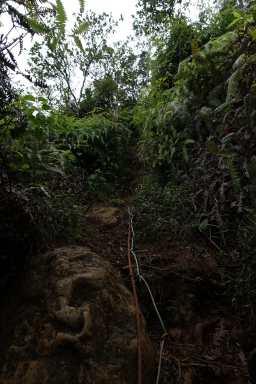 Rope on Hihimanu Ridge trail