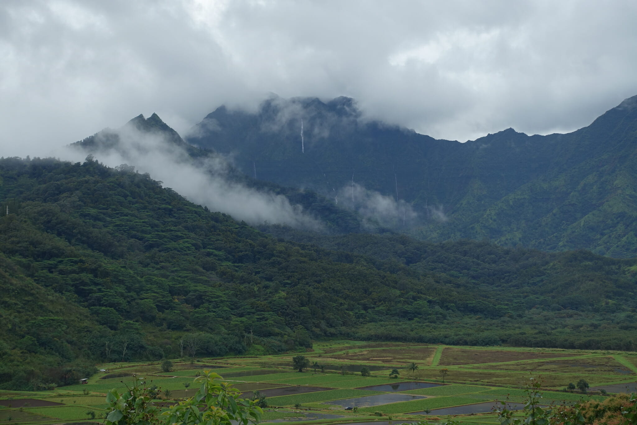 view of field and waterfalls in the mountains from Hanalei Overlook
