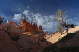 Along the Queen's Garden Trail, Bryce Canyon National Park