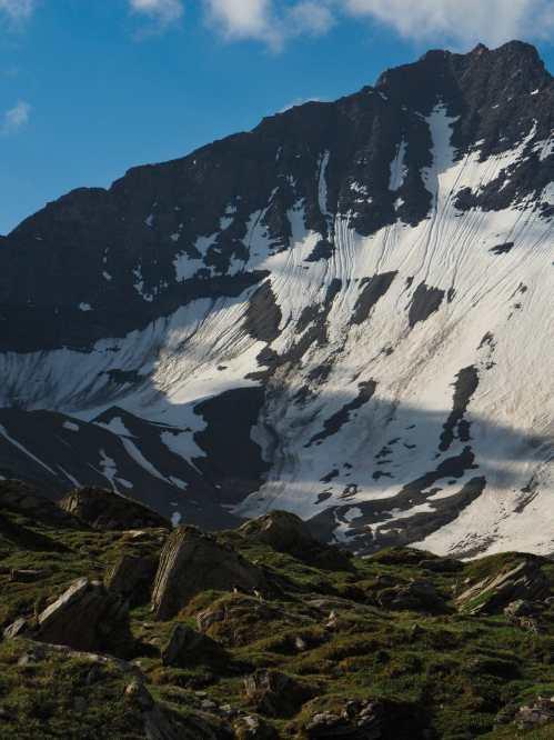 Marmots in valley above Bonatti