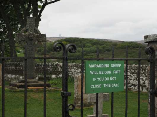 Marauding sheep will be our fate if you do not close this gate