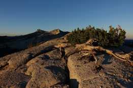 Dawn in Yosemite