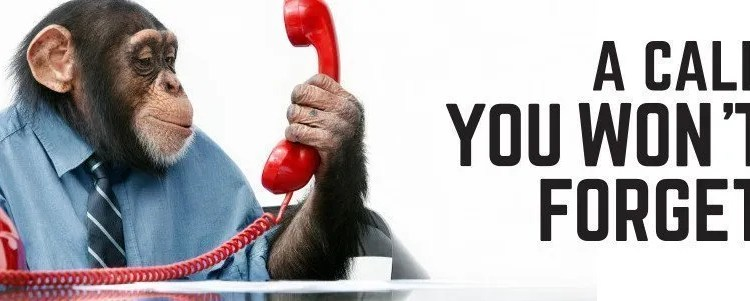 Police, Monkeys and Telephones