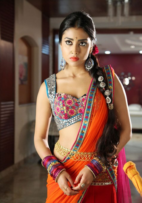 shriya saran hot photos from pavitra movie