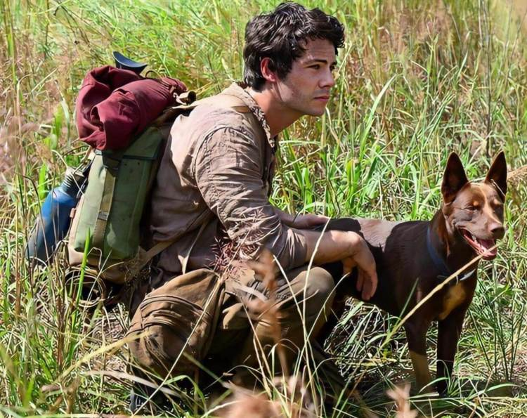 'Love and Monsters' Trailer: Dylan O'Brien Fights Off ...