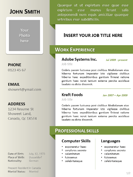bayview clean powerpoint resume curriculum vitae template