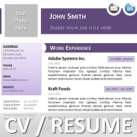 resume template in ppt costa sol real estate and business advisors