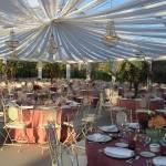 lamparas bodas en carpa