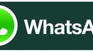 whatsapp - WhatsApp agora é oficialmente gratuito