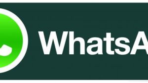 WhatsApp agora é oficialmente gratuito 7