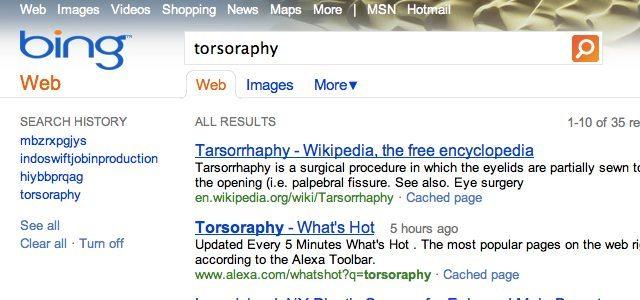 torsoraphy bing - Bing-gate: Microsoft copia resultados do Google no Bing