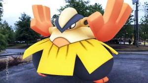 Pokémon GO ganha evento com Pokémon lutadores 12