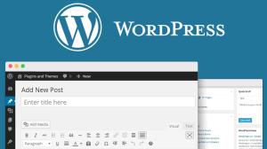 WordPress: melhores dicas para entender recursos e criar posts 6