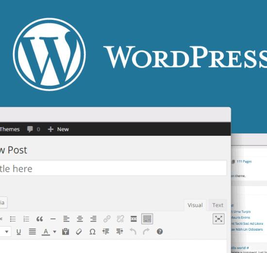 WordPress: melhores dicas para entender recursos e criar posts 5