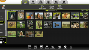 Review: Kizoa, o editor de vídeos disponível em qualquer lugar 11