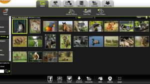 Review: Kizoa, o editor de vídeos disponível em qualquer lugar 9