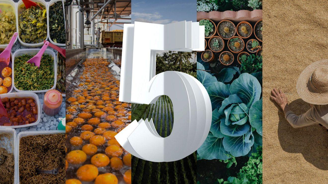 As 5 inovações tecnológicas que mudarão o mundo em 2024, segundo a IBM 5