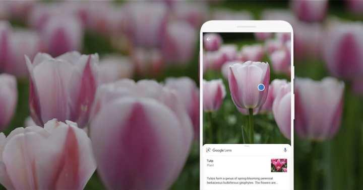 Google Lens no Moto G7