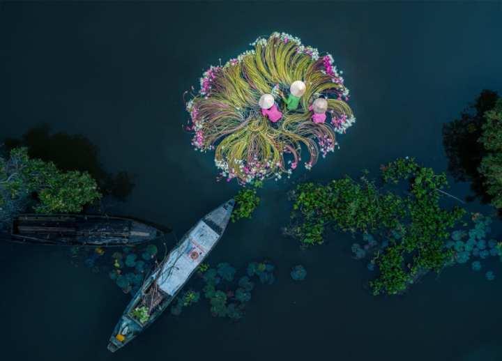 """Flowers on the water"" Foto: Khánh Phan"