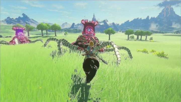 Zelda na foto
