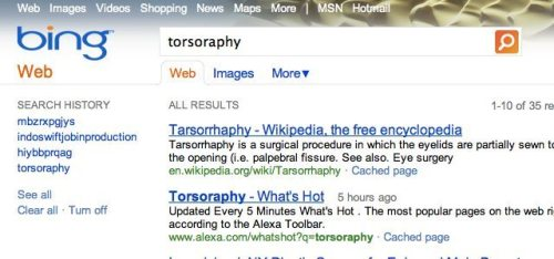 torsoraphy bing 500x234 - Bing-gate: Microsoft copia resultados do Google no Bing