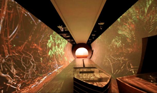 túnel biodiversidade1 610x364 - Tecnologia e cultura popular marcam museu sergipano