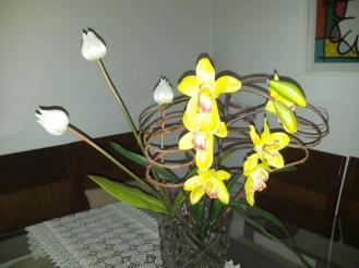 Condição de luz: sem iluminação ambiente, foto com flash