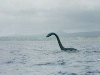 smt-Nessie-Real-Photos-03