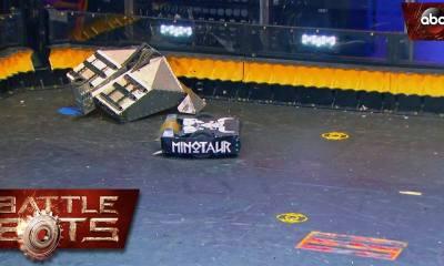brasil brasileiro battle bots minotaur minotauro