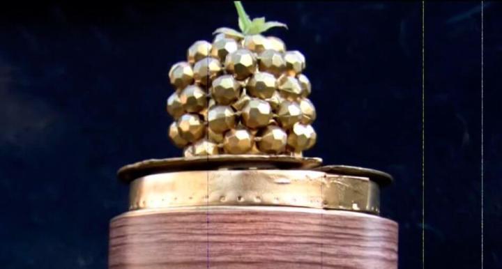framboesa de ouro 720x386 - O pior do cinema: veja os indicados ao Framboesa de Ouro