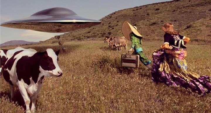 vaca ovni gucci campanha