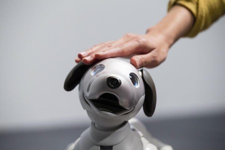 aibo 720x480 - Nova versão do cãozinho robô da Sony, o Aibo, é anunciada